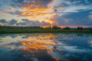 Reflection of sunset in a lake